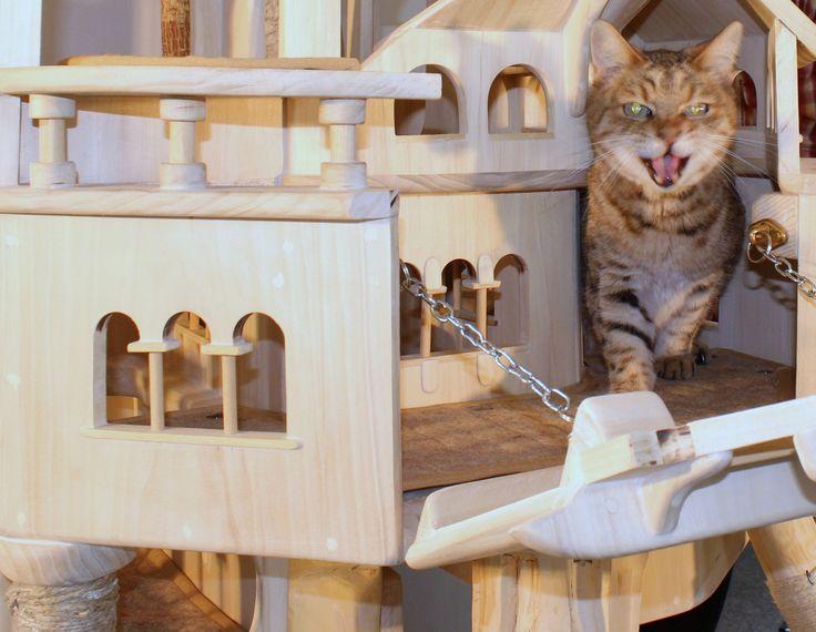 http://www.abitare.it/en/gallery/design-en/products/design-moda-per-gli-animali-riflessioni-post-salone-mobile-gallery/?ref=204402&foto=3