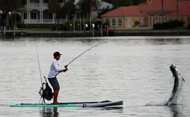 27 Best Images About Sup Fishing On Pinterest Trips