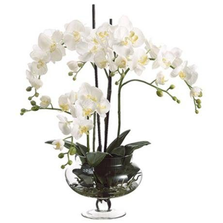 White Orchid Arrangement in glass footed bowl