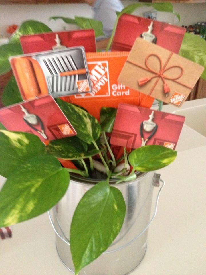 Housewarming Gift.  My siblings, mom and I all purchased Home Depot gift cards to celebrate my sister's new home.  Taped the cards to contractor pencils and then put 2 small green plants, one trailing one with height in a paint bucket with some rocks.  Made a fun display for the gift cards.