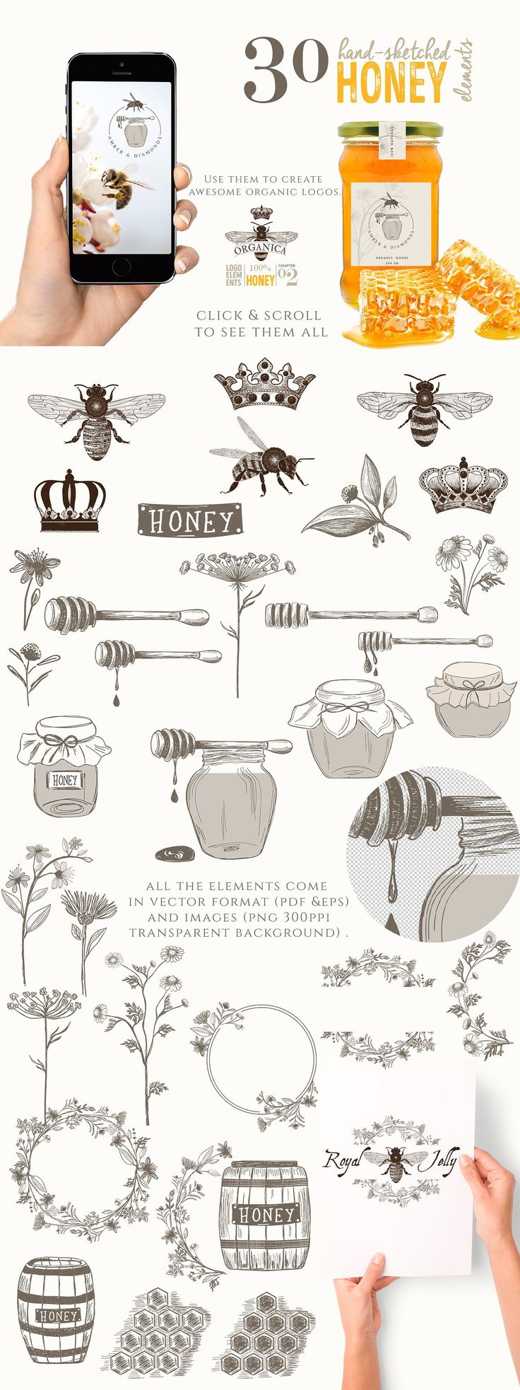 ORGANIC LOGO ELEMENTS – HONEY by Friendly Label on @creativemarket logo, organic, honey, bee, hand-sketched, hand-drawn, jar, crown, wood barrel, honey dipper, chamomile, herbals, plants, illustrations, graphics