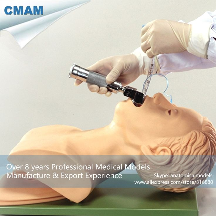 (305.00$)  Watch now - http://aiavy.worlditems.win/all/product.php?id=32797584075 - CMAM-CPR01 Electronic Tracheal Intubation Training Simulator Model