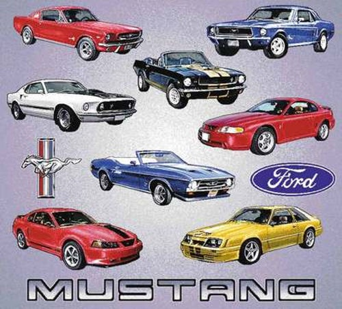 the mustangs throughout the years there are 5 generations of the ford mustang mustang. Black Bedroom Furniture Sets. Home Design Ideas