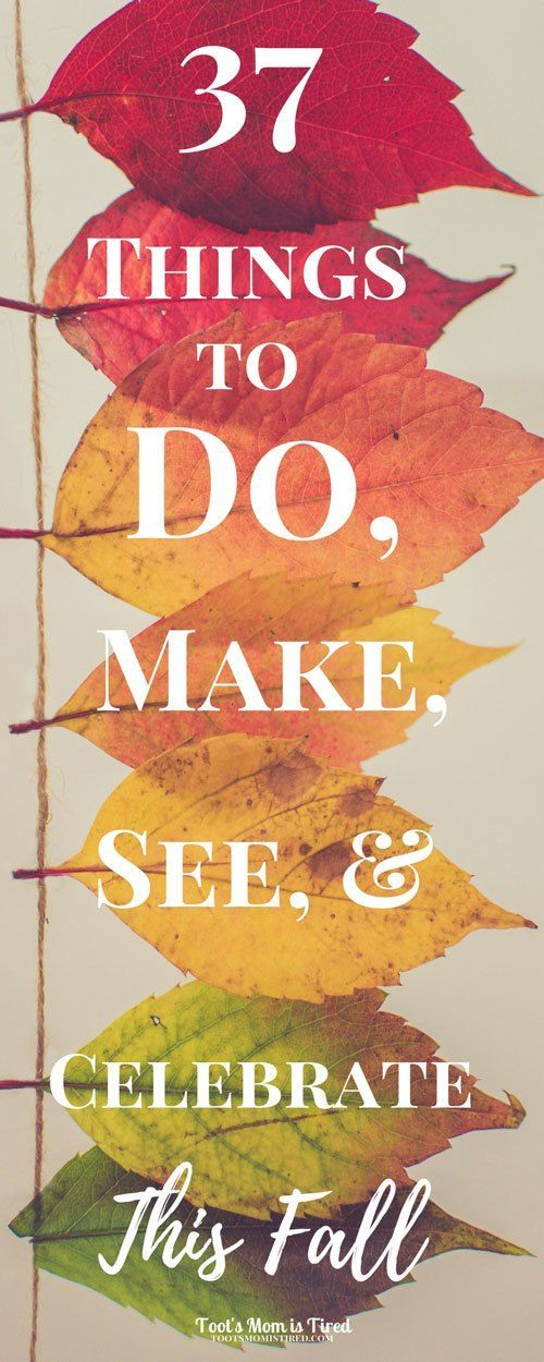 37 Things to Do, Make, See, and Celebrate This Fall | Fall activities, fall recipes, autumn, parenting, mom life, motherhood, mom blog, mommy blog, halloween costumes, halloween activities, toddler fall activities, mom self care activities for fall, fall