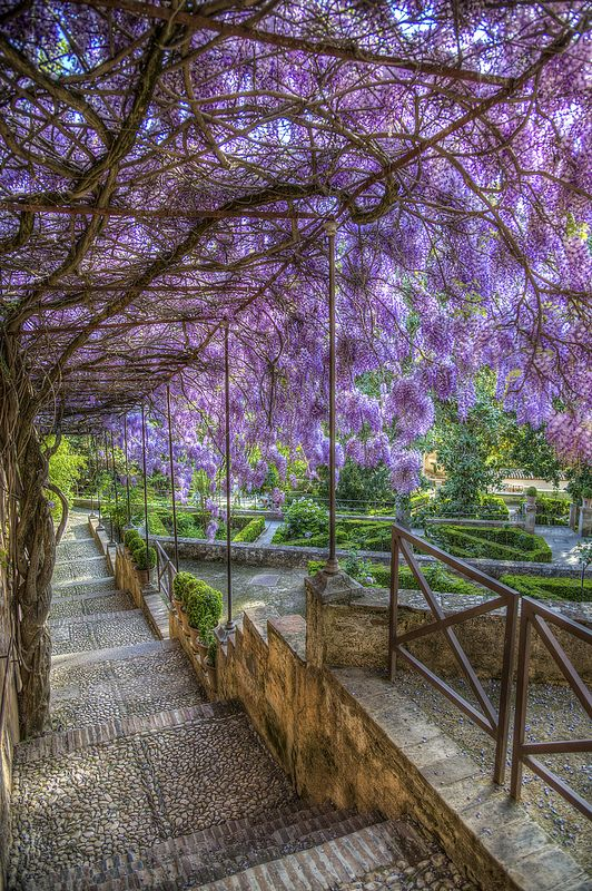 Generalife Gardens, the Alhambra, Granada, Spain