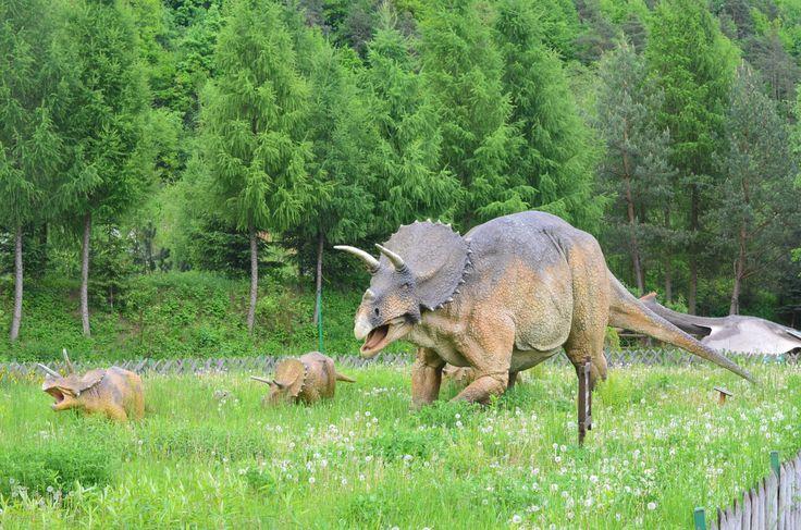 Jurapark Bałtów - nasze dinozaury też mają dzieci. Zapraszamy podziwiać nasze maleństwa.