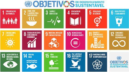 Os símbolos dos 17 Objetivos de Desenvolvimento Sustentável. Imagem: PNUD Brasil
