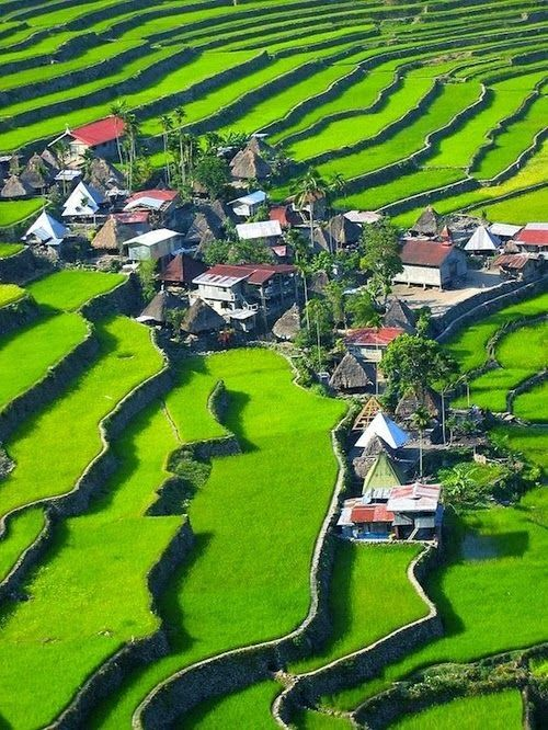 The Banaue Rice Terraces, Philippines                                                                                                                                                      More