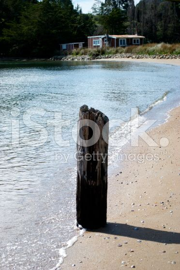 Kiwi Bach on Beach royalty-free stock photo