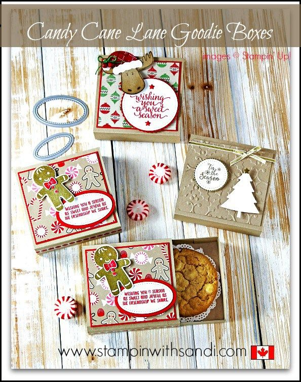 You Tube Tuesday Video - Candy Cane Lane Goodie Boxes by Sandi @ www.stampinwithsandi.com