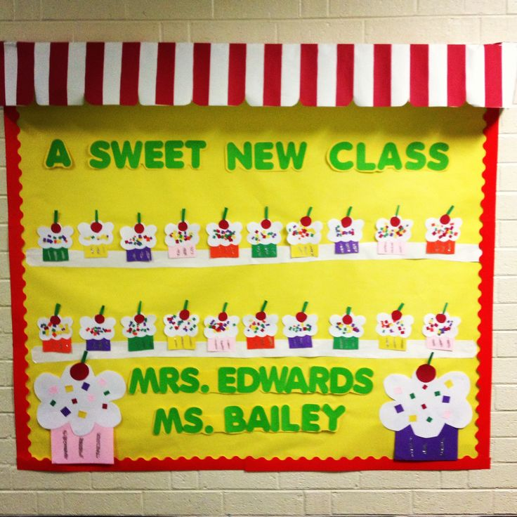 expensive jewelry Back to school bulletin board  What kindergartener doesn  39 t love cupcakes