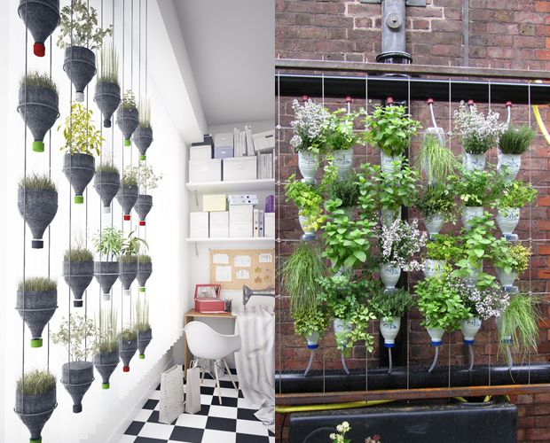 Aprenda a fazer uma mini horta! Elas são uma ótima forma de melhorar os seus hábitos alimentares, além de trazerem mais vida para dentro da sua casa.