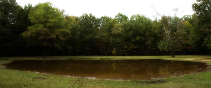 The Bloody Pond at Shiloh