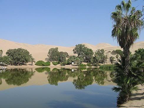 Oasis desierto de la Guajira