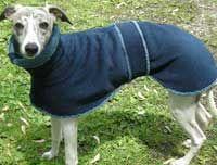 Blue Willow Dog Coats: Our Warm Winter Dog Coats and Waterproof Dog Raincoats