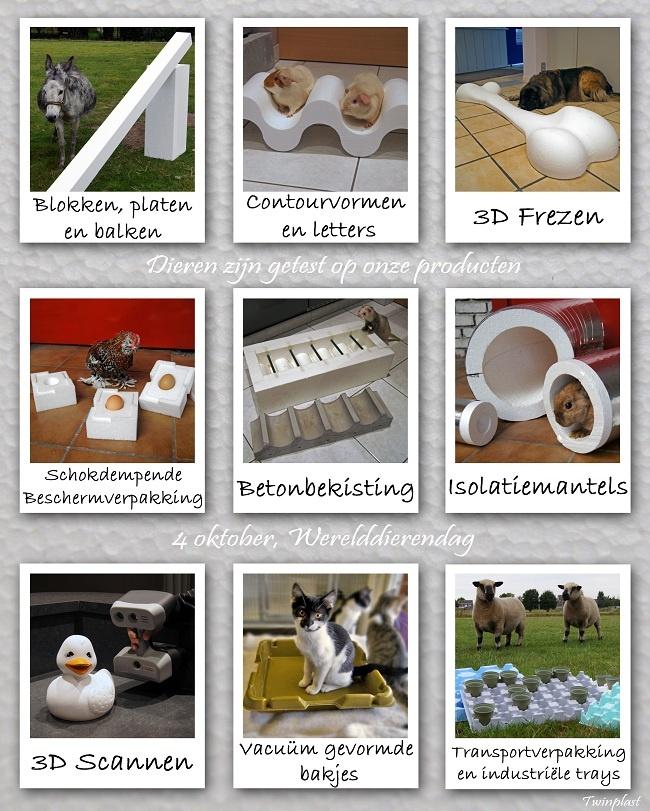 Prikbord - Werelddierendag (oktober 2012)