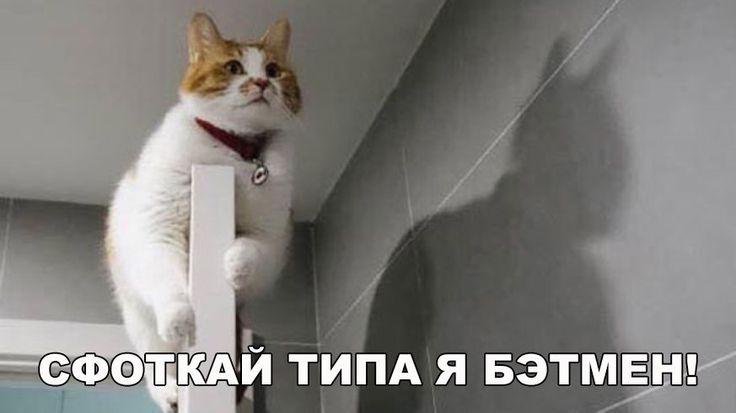 Бэтмен начало)