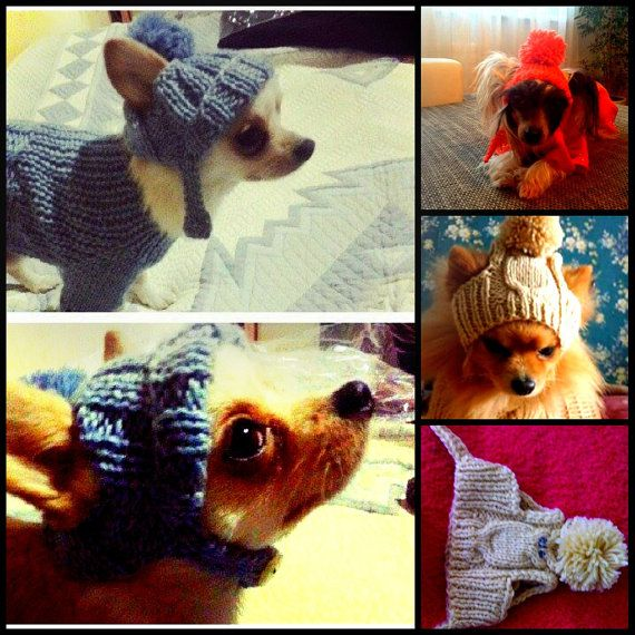dog hat.puppy hats.hat.kniitting hat for dog.clothes.small dog hat.big dog hat