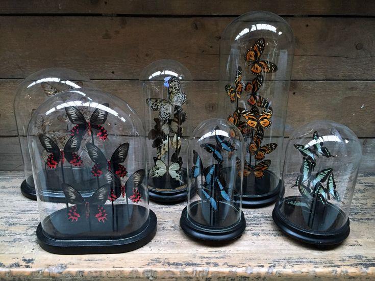Victoriaanse stolpen met vlinders. Ze zijn te verkrijgen in vele - Decoratie artikelen. landelijke woondecoraties. - De Jong Interieur
