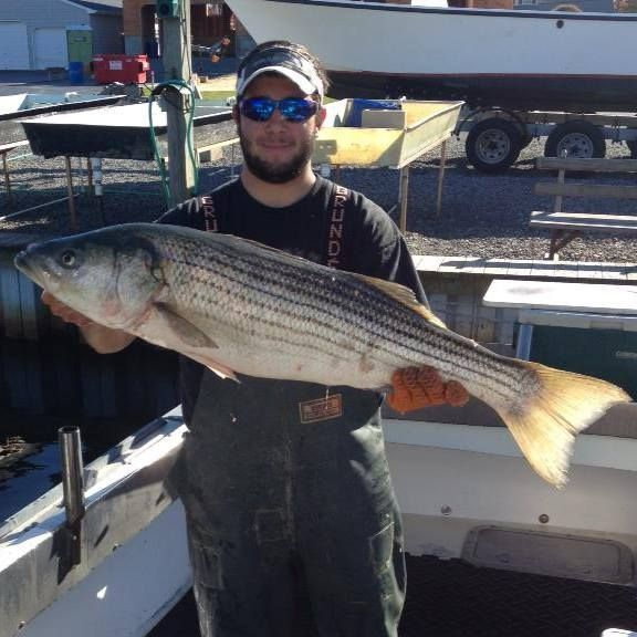 21 best images about striped bass fishing north east on for Best saltwater fishing spots in nj