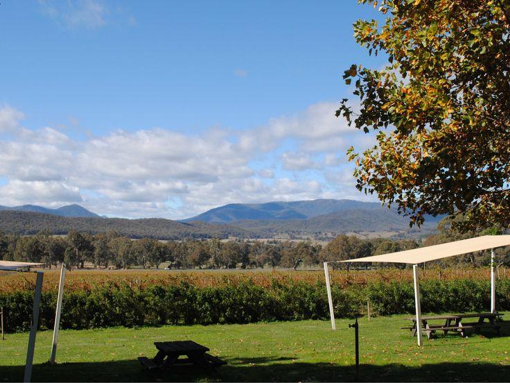 Beautiful views from Gracebrook Vinyards, King Valley