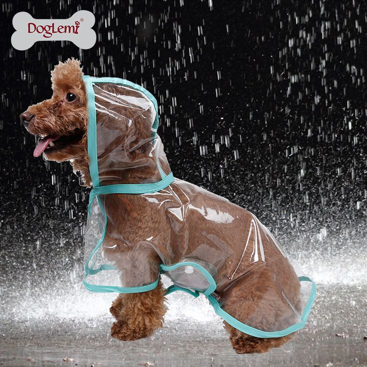 Find More Dog Raincoats Information about 2015 Fashion Pet Dog Rain Coat Jacket Clothes Transparent Waterproof Rainsuit 4 Colors Free&Drop Shipping 10 pc/lot,High Quality clothes animals,China raincoat nylon Suppliers, Cheap raincoat kids from DogLemi  Pet Product wholesale  on Aliexpress.com