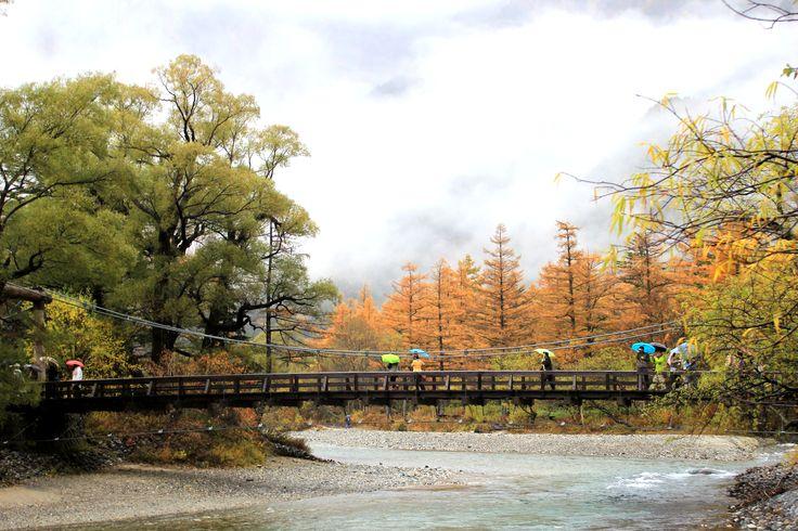 Kamikochi Kappa Bridge to stain autumn leaves/上高地 紅葉に染まる河童橋