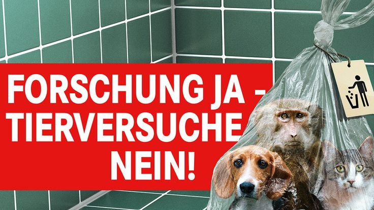 Stops the construction of the huge animal experiment lab at the Max Delbrück Center in Berlin-Buch! Stronger promotion of alternative methods!