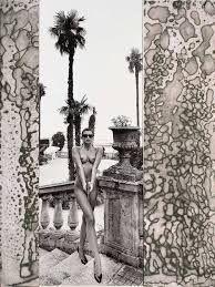 Image result for helmut newton iconic polaroids