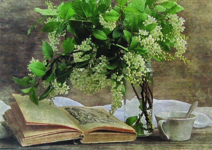 """Gümüşlük Akademisi Arnavutköy """"Buluşmalar""""ı, 13 Ekim Pazartesi günü başlıyor. Yeni döneme yazı, şiir, roman, öykü, görsel imgeler, antropoloji, mitoloji, müzik, şarkı, oyun yazarlığı, yayıncılık, edebiyat ajanlığı, yaşam, ilk kitap, sinema okumaları, kadın kahkahası, spor yazarlığı, dilbazlık, fantastik edebiyat, çocuk ve gençlik edebiyatı, lezzet, yaratıcı okuma, edebiyat gardırobu ve felsefe seminerleri yer alacak.   http://www.artfulliving.com.tr/gundemdetay/3086"""