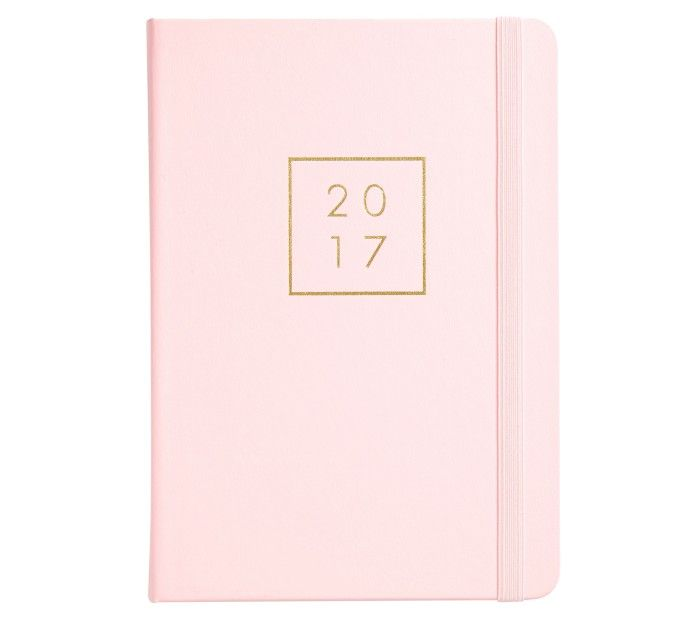 2017 A5 DAILY DIARY: PINK LAVENDER