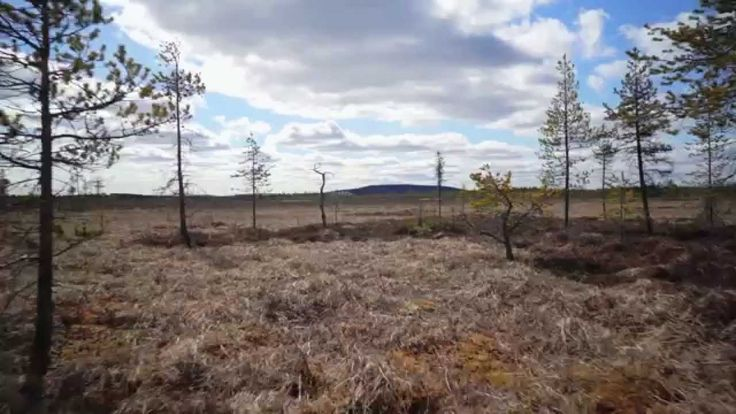 Geocollectors - Lapland, Finland (May 2014)