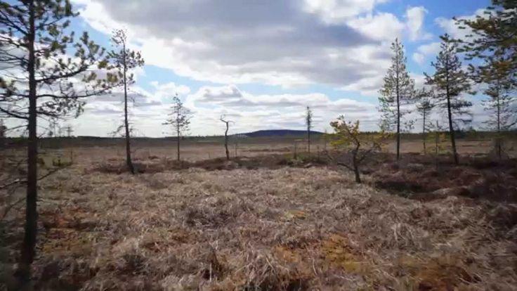 Geocollectors - Lapland, Finland (May 2014)
