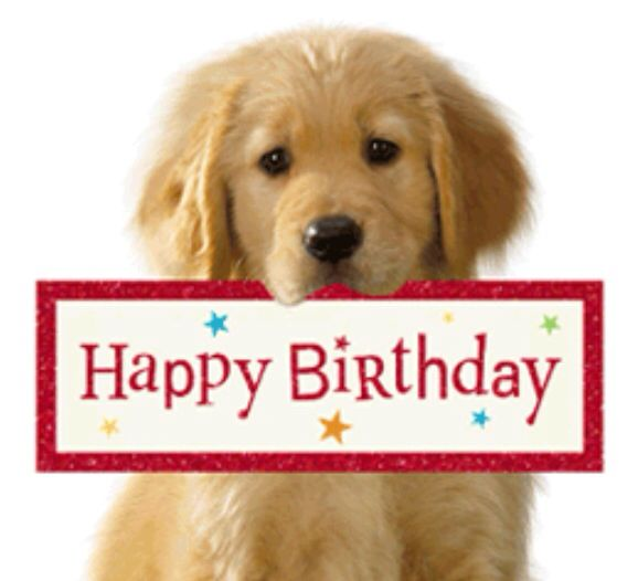 434 Best Images About Happy Birthday On Pinterest