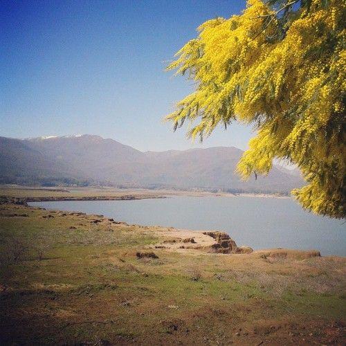 lago colbun #lagocolbun #chile