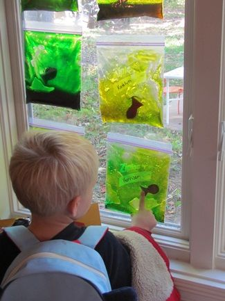 Squishy fishy aquariums. Fun sensory on a window, door or wall. DIY with ziploc bags.