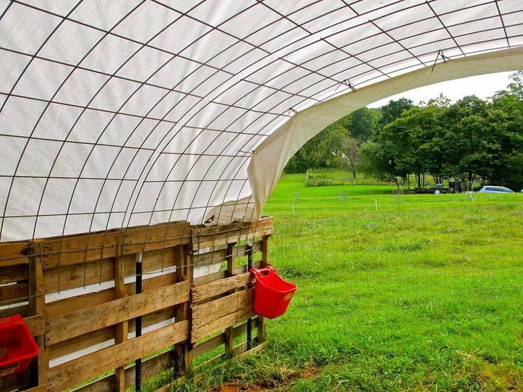 Building a Shelter Out of Pallets :: Hometalk