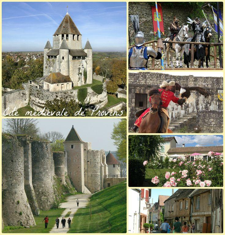 Patrimoine Mondial de l'Unesco - Monuments, visites guidées, spectacles historiques, roseraie, petit train, etc.