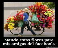 flores para facebook - Buscar con Google
