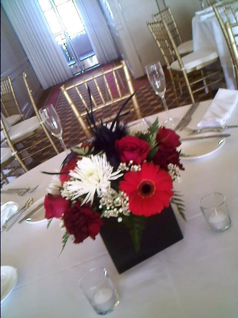 red gerbera daisy centerpieces with black cube vase