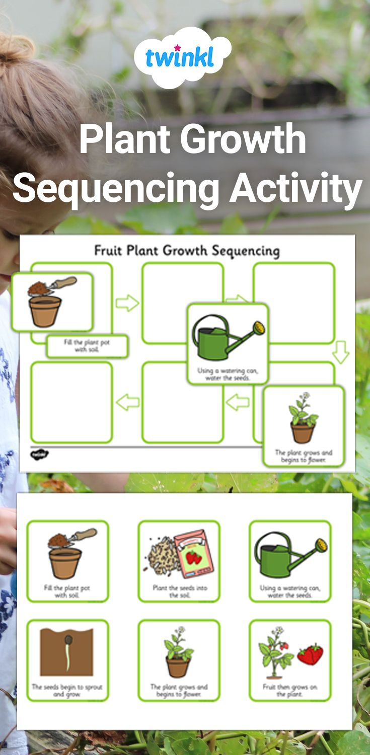 Plant Growth Sequencing Activity Sequencing Activities Plant Activities Activities [ 1500 x 735 Pixel ]