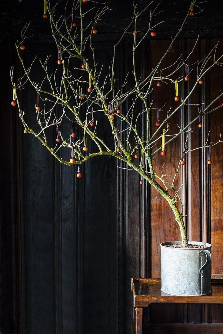 Lichen-covered branch with crab apple baubles Photo by Jason Ingram