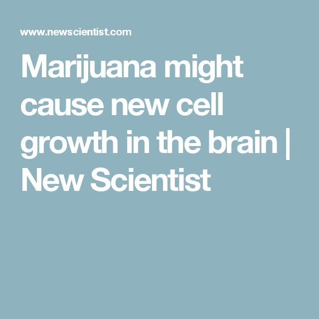 Marijuana might cause new cell growth in the brain   New Scientist