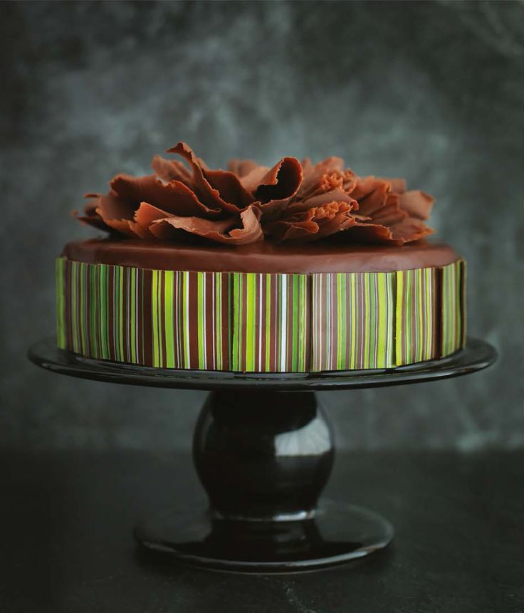 30 best claire clark recepies images on pinterest clarks around belgian chocolate cake recipe by claire clark cooked fandeluxe Choice Image