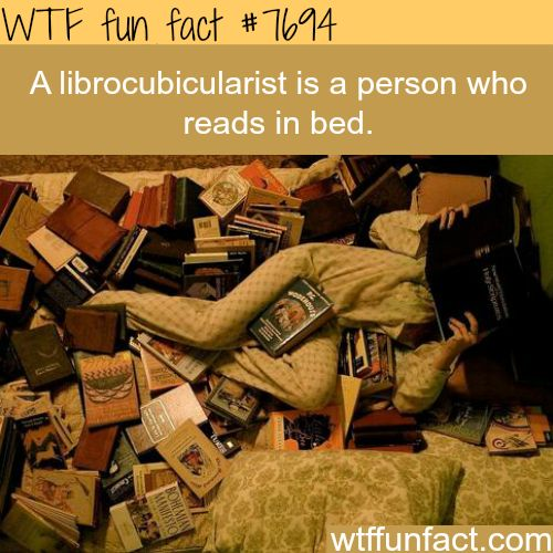 A person who reads in bed - Next time someone asks me what I do, this is what I will tell them