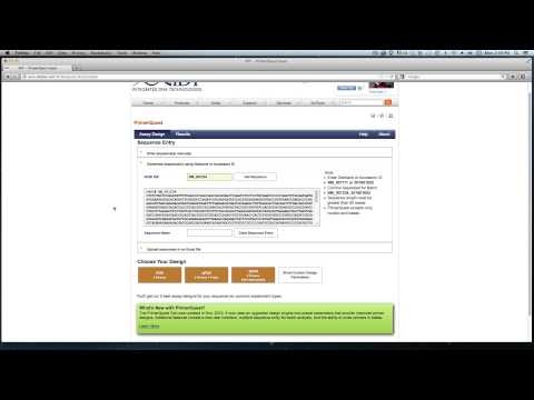 Design qPCR Assay at a Specific Location with PrimerQuest