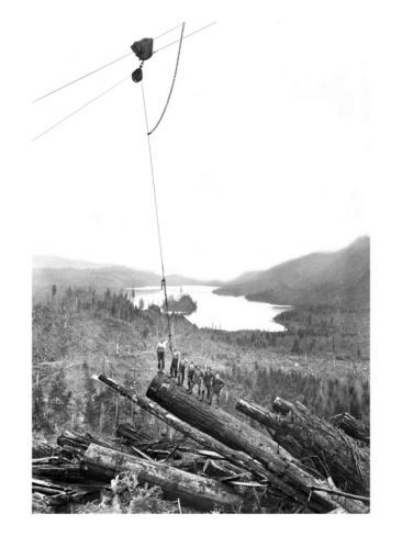 17 best images about logging photos on pinterest  susan