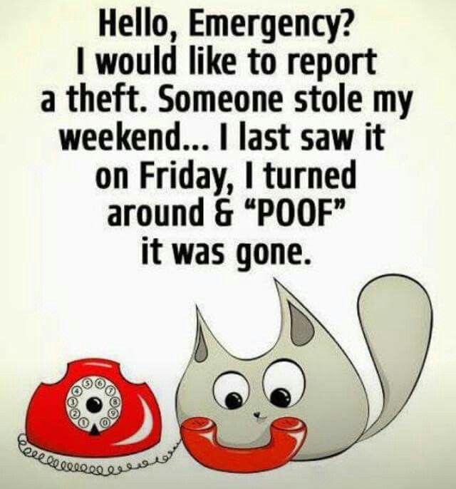 Best 25 Sunday Humor Ideas On Pinterest Friday Feeling