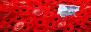 Free Poppies Pictures - Bing Images