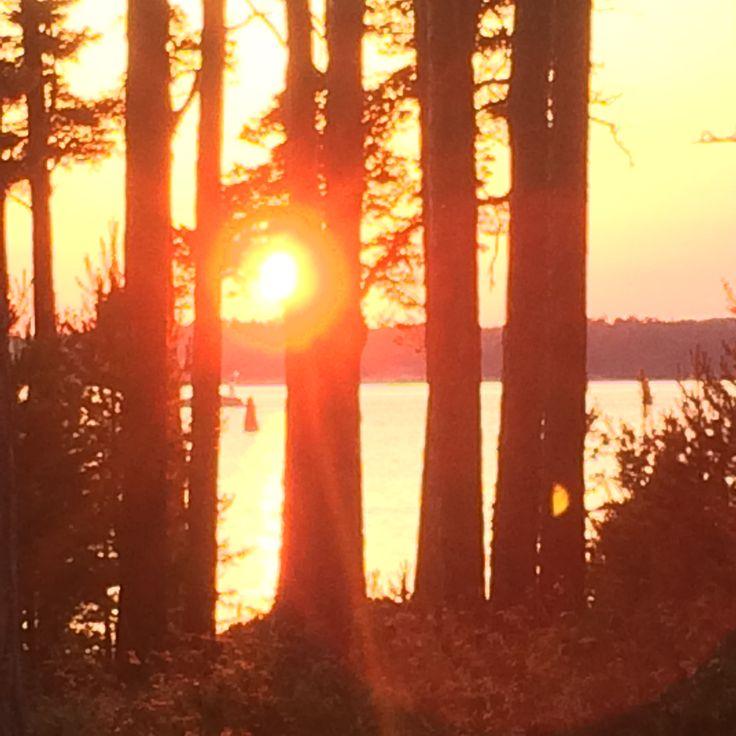 Sandhamn sun
